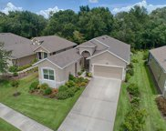 8278 Bridgeport Bay Circle, Mount Dora image