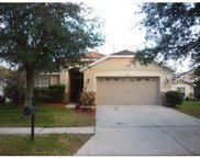 34501 Cliffcreek Court, Wesley Chapel image