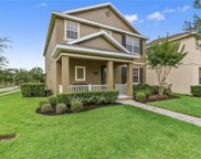 14704 Black Cherry Trail, Winter Garden image
