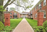 605 Waukegan Road Unit 2J, Glenview image