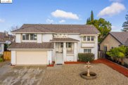 2509 Blacktail Ct, Antioch image