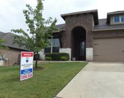 4305 Privacy Hedge St, Leander image