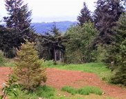 265 Crego Hill Rd, Chehalis image