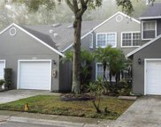 5848 Red Cedar Lane, Tampa image