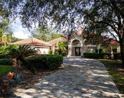 11528 Night Heron Dr, Naples image