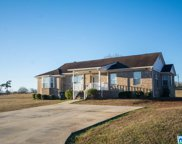 370 Dickey Dr, Pell City image