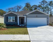 500 Falcon Terrace Ct., Conway image