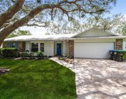 613 Heather Brite Circle, Apopka image
