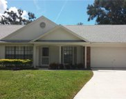 1711 Hiddenwood Court, Apopka image