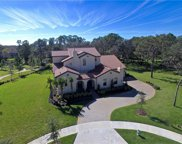 10024 Serene Waters Court, Orlando image