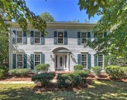 10009  Red Bluff Court, Charlotte image