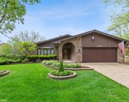 941 Valley View Drive, Downers Grove image