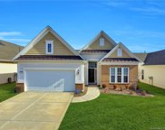 8084 Pawleys  Court, Indian Land image
