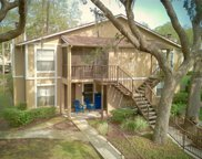 14325 Hanging Moss Circle Unit 102, Tampa image