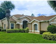 14944 Hickory Greens CT, Fort Myers image