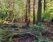 Old Mill  RD Unit #9, Port Orford image