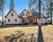 23521 N Meadow River, Chattaroy image