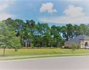 1648 Wood Stork Dr., Conway image