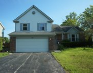 110 Copperwood Drive, Buffalo Grove image