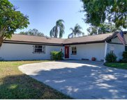 7346 Brookview Circle, Tampa image