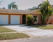 7007 Cobblewood Court, Tampa image