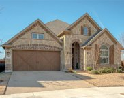 411 River Birch, Euless image