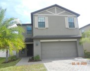 19921 Satin Leaf Avenue, Tampa image