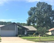 3924 Belmoor Drive, Palm Harbor image