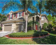 2352 Messenger Circle, Safety Harbor image