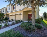 10407 Tulip Field Way, Riverview image