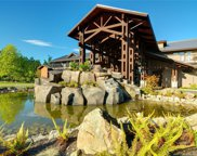 1175 Resort  Dr Unit #SA2-224, Parksville image