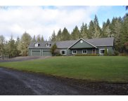 39285 UPPER CAMP CREEK  RD, Springfield image