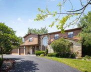 3916 Snowbird Lane, Northbrook image