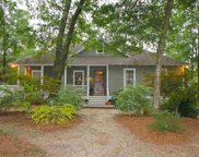 53 Hope Ln., Pawleys Island image