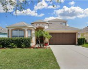11565 Weston Course Loop, Riverview image