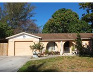 3135 SW 45th St, Naples image