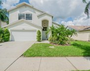 11501 Whispering Hollow Drive, Tampa image