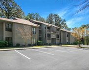 1007 Indian Wells Ct. Unit 1007, Murrells Inlet image