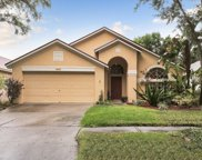 12323 Glenfield Avenue, Tampa image