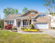 4205 Rosy Billed  Court, Indian Land image