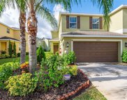20212 Indian Rosewood Drive, Tampa image