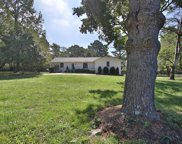 9021 Forest Lawn Dr, Brentwood image