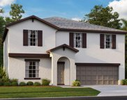 10520 Strawberry Tetra Drive, Riverview image
