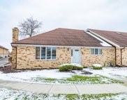 7538 West Willowood Court, Orland Park image