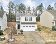 1017 Pecan Ridge  Road, Fort Mill image