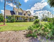 10341 Morningside Ln, Bonita Springs image