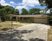 1733 W Overpar Drive, Tampa image