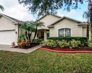 13413 Madison Dock Road, Orlando image