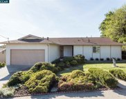 884 Hawthorne Dr, Rodeo image