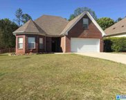 508 Waterford Highlands Ct, Calera image